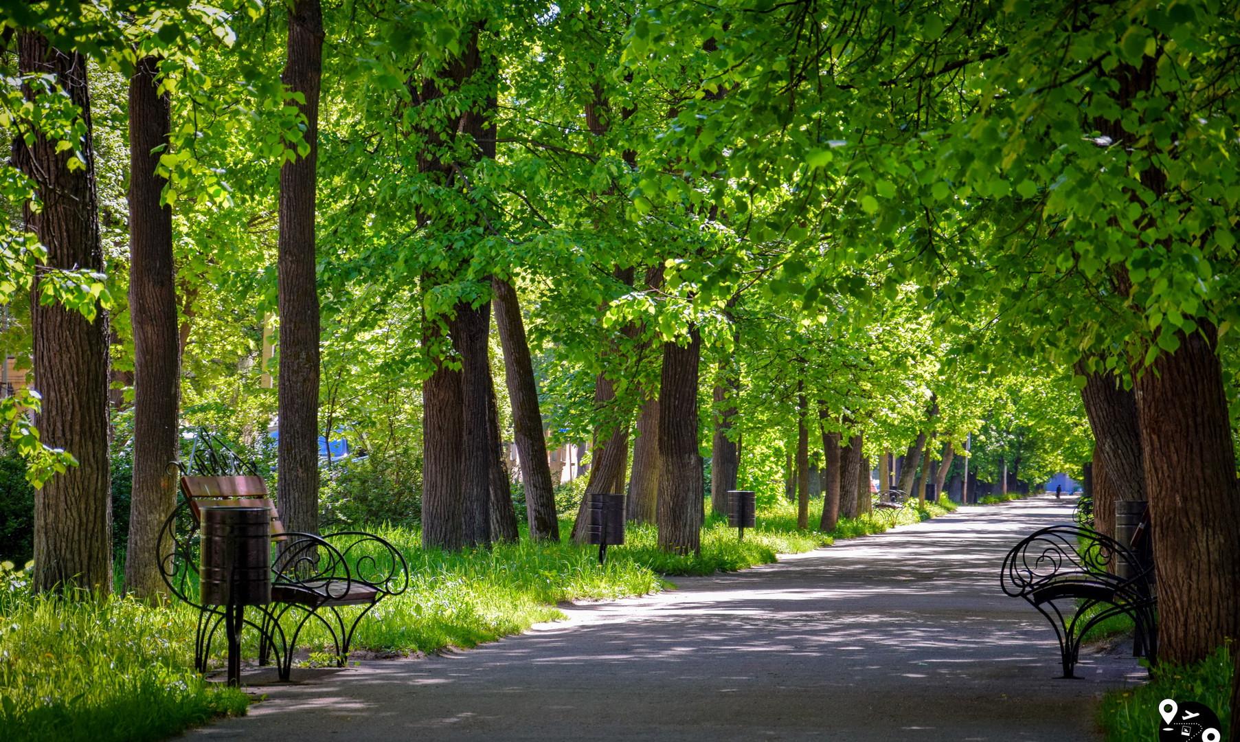Сквер на Садовой улице, Иваново