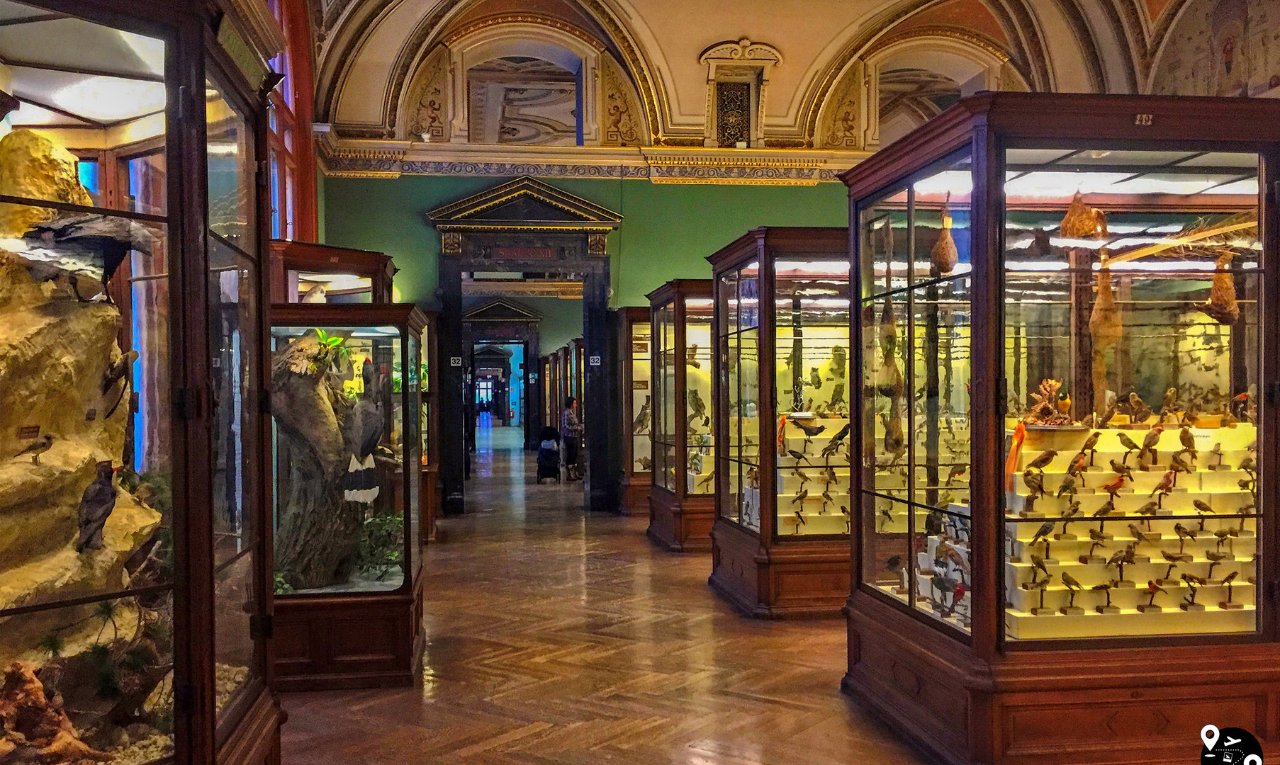 Зал природы в Музее естествознания, Вена