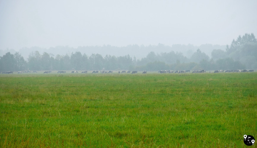 Пейзажи Новгородской области