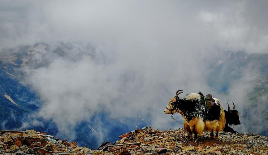 На вершине Мусса-Ачитара, Домбай