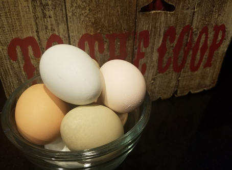 Eggs! How important are they?