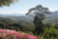 Serra-Negra-SP.jpg