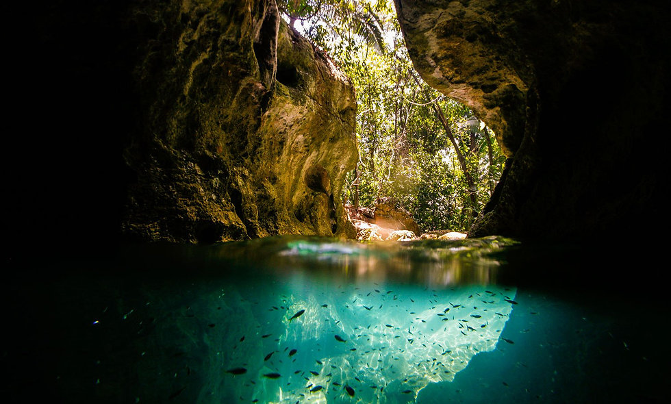 Cavernas do Petar - Standard Especial