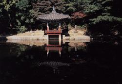후원-창덕궁 애련지02.jpg