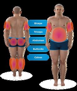 Emsculpt_Neo_PIC_Body-parts-male-illustr