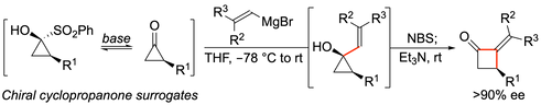 JACS_Cyclobutanones_TOC_.png