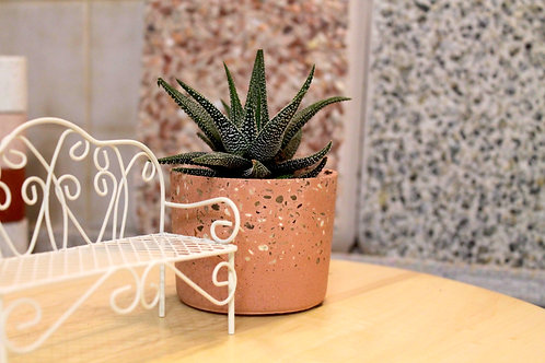 DIY KIT 'PLANTER'