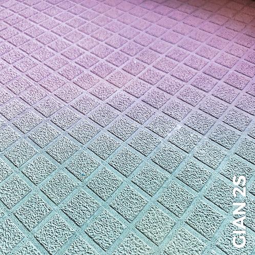 GIAN® 2s