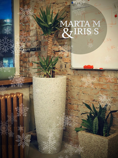 MARTA M