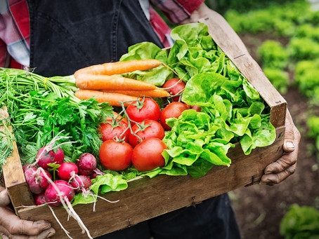 O IS FOR ORGANIC: HOW TO UNDERSTAND WHAT ORGANIC MEANS