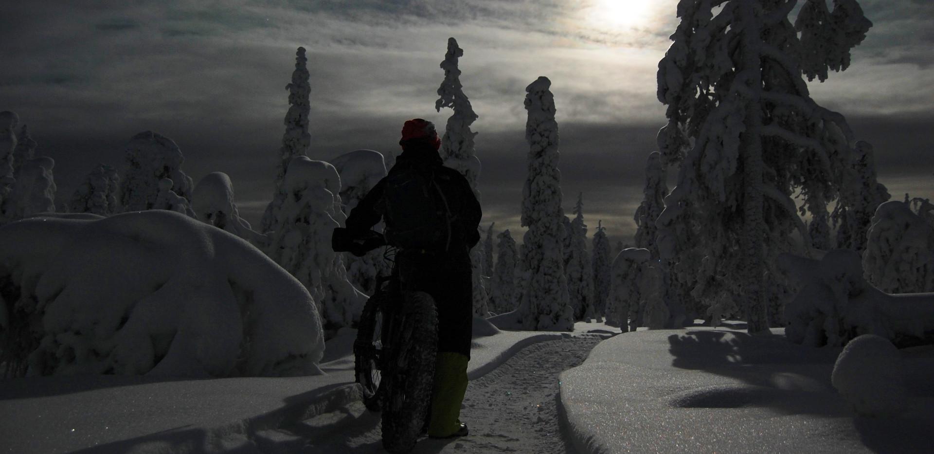 Winter biking in Moonlight