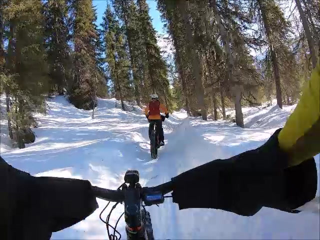 Cruising on the winter trails of National Park