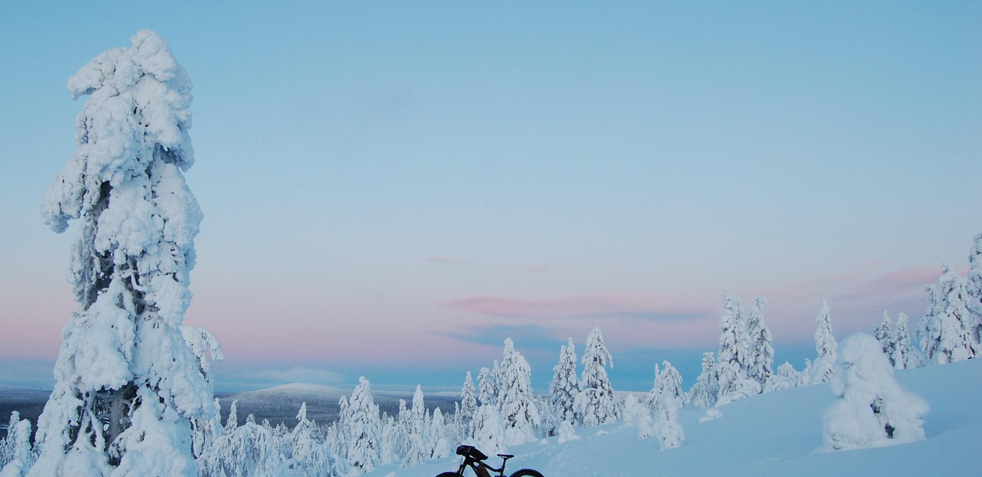 Beautiful light of polar night