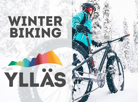 Ylläs Winter Biking