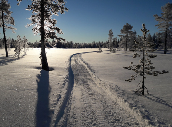 Winter biking trail