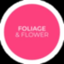 Pulsante_FOLIAGE.png