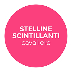 Pulsante_STELLINE_CAVALIERE.png
