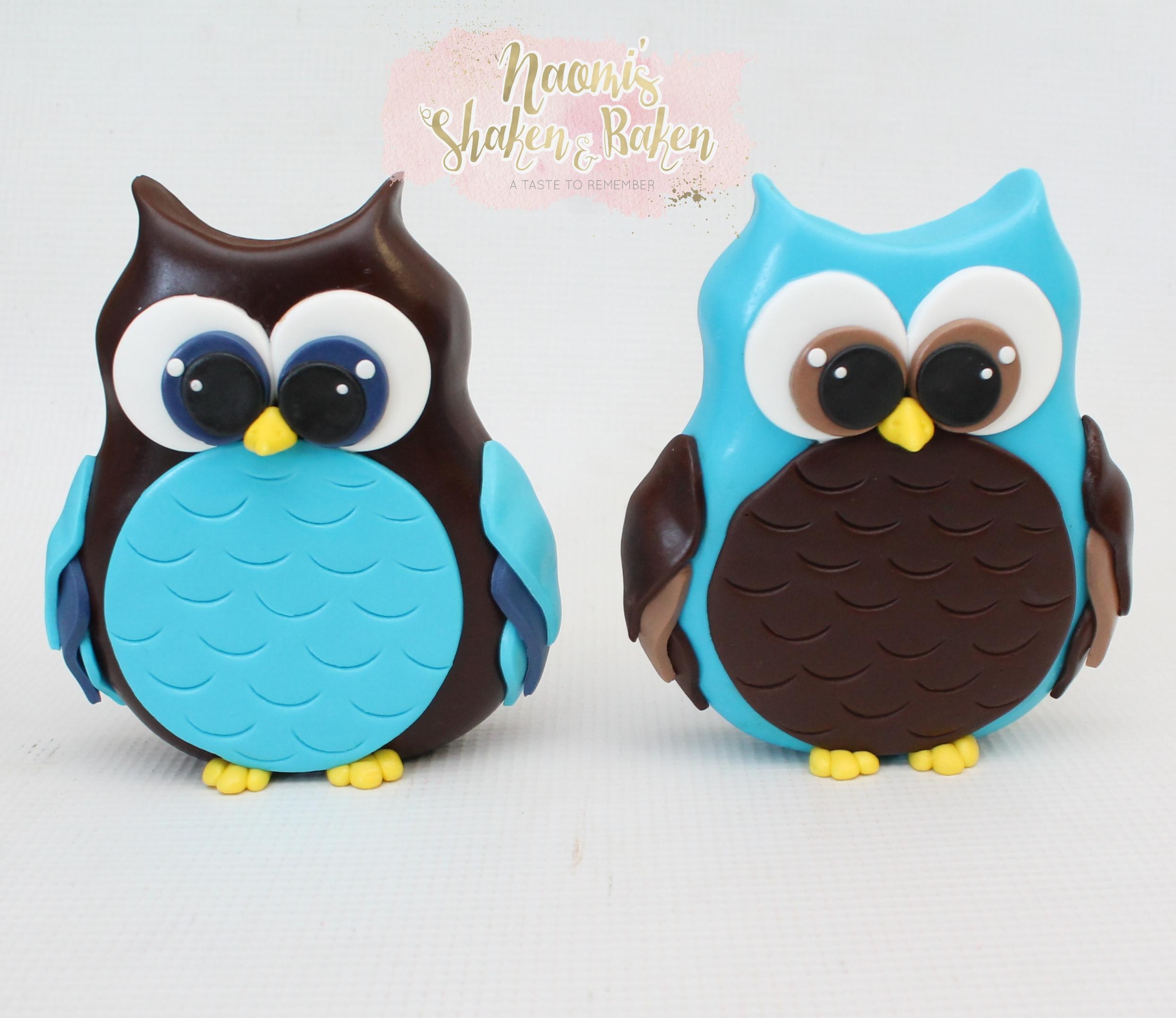 Edible Fondant Boy Owls Cake Toppers