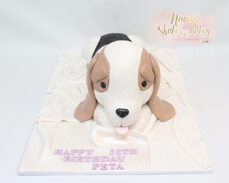 3D teddy puppy cake