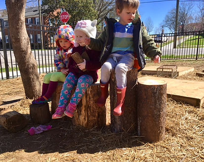 Prek3 on Stumps.jpg