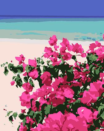 Beach Roses 01