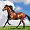 Thumbnail: Horse 05