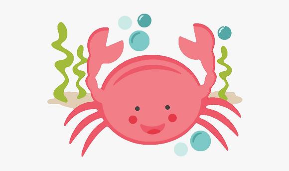 Kids Crab 03