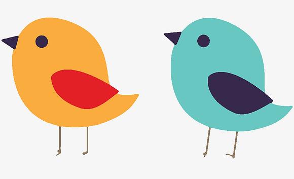 Kids Birds 07