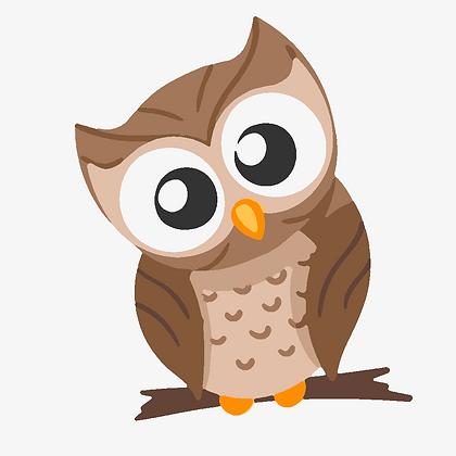 Kids Owl 01