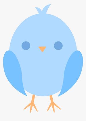 Kids Birds 03