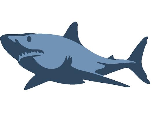 Kids Shark 03