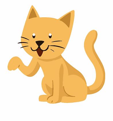 Kids Cat 01
