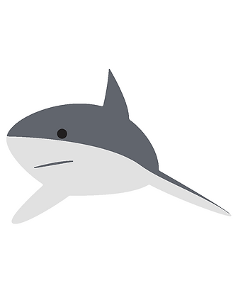 Kids Shark 01