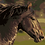 Thumbnail: Brown Horse