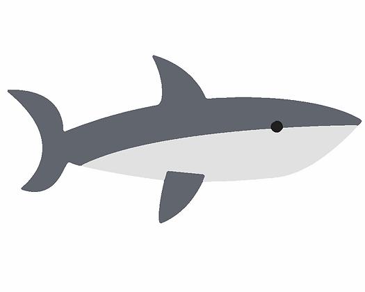 Kids Shark 02