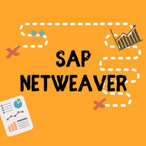 How SAP NetWeaver components enable the SAP environmental functionalities?
