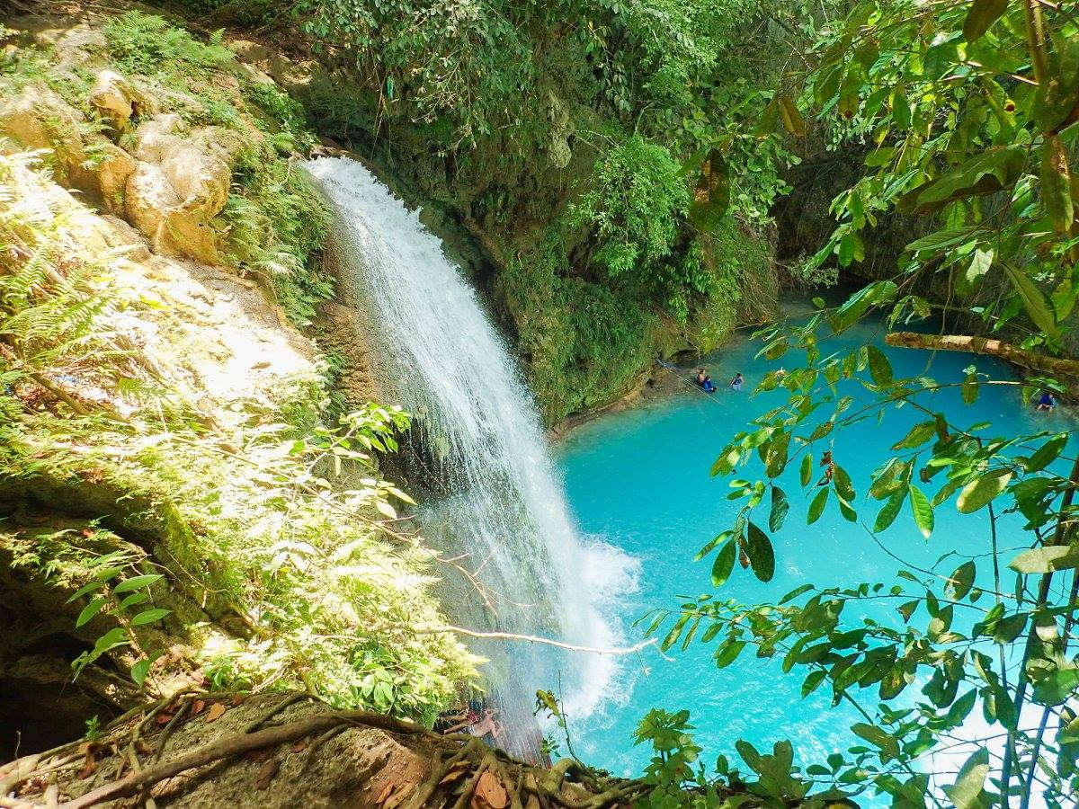 Kawasan Falls Experience