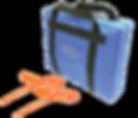 CASH IN TRANSIT TAMPER PROOF SECURITY BAGS