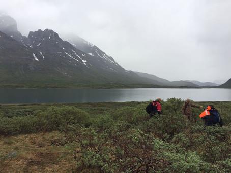 Descubierto un asentamiento vikingo en Groenlandia