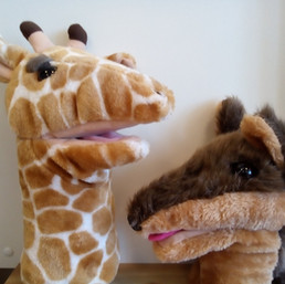 giraf en jakhals