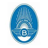 blues egg logo.jpg