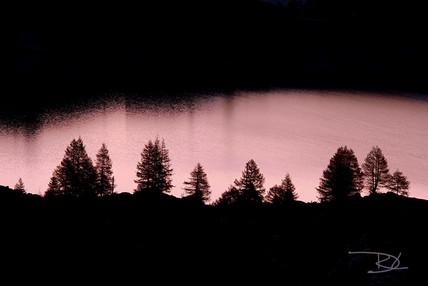 montagne-et-paysages-suisse-061.jpg