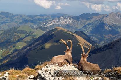 montagne-et-paysages-005.jpg