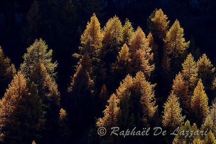 montagne-et-paysages-032.jpg