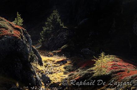 montagne-et-paysages-042.jpg