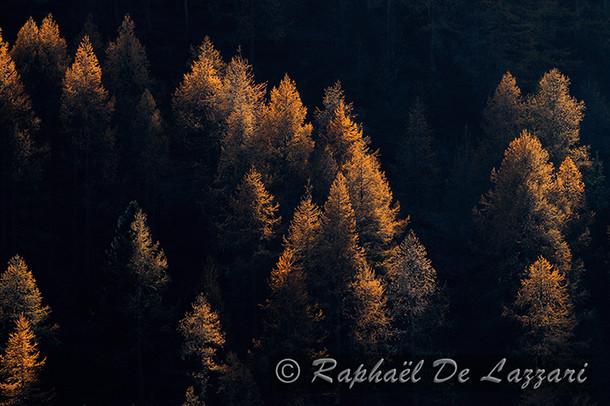 montagne-et-paysages-034.jpg