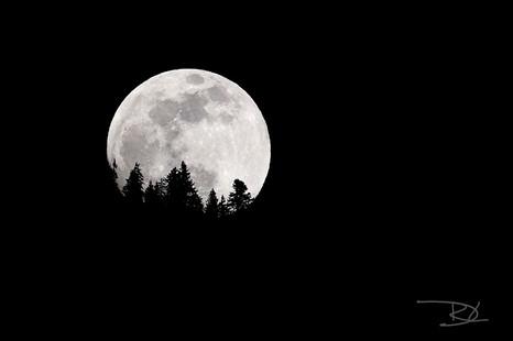 pleine-lune-montagne-002.jpg