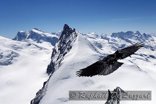 montagne-et-paysages-008.jpg
