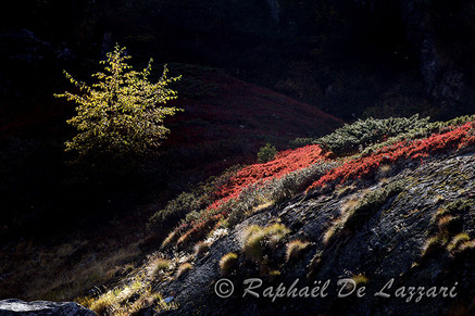 montagne-et-paysages-043.jpg