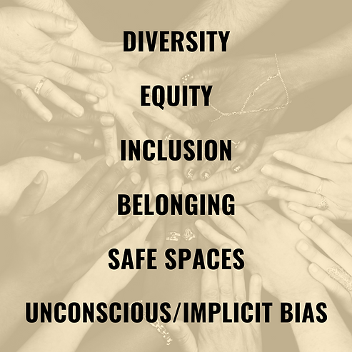 DIVERSITY EQUITY INCLUSION SAFE SPACES (